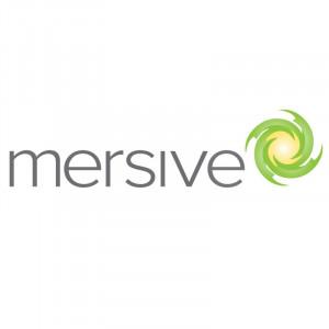 MERSIVE Unlimited User Perpetual License