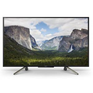 SONY 50'' BRAVIA Full HD HDR Professional Display
